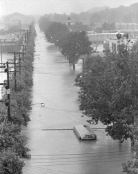 A view of a tree-lined Cameron Street taken from the State Street Bridge looking north toward Herr Street. Flood waters nearly cover the commercial bus in the foreground.